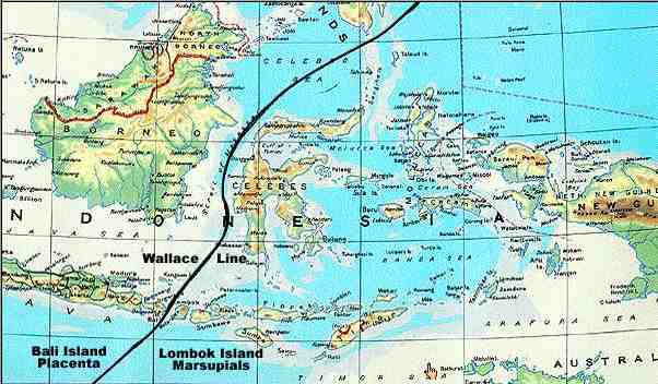 オセアニアの地図とメラネシア,...